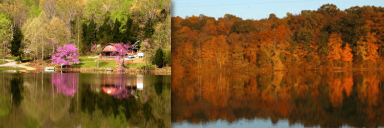 Image of home at lake within Metcalfe County during the fall